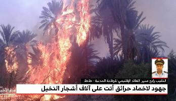 توضيحات القائد الإقليمي للوقاية المدنية بطاطا لميدي1تيفي حول حريق مهول أتى على الآلاف من أشجار النخيل
