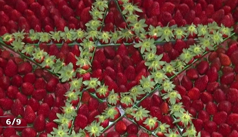 Larache: les petits fruits rouges à l'honneur