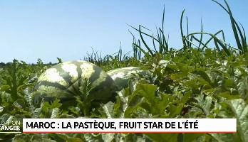 La pastèque, fruit star de l'été