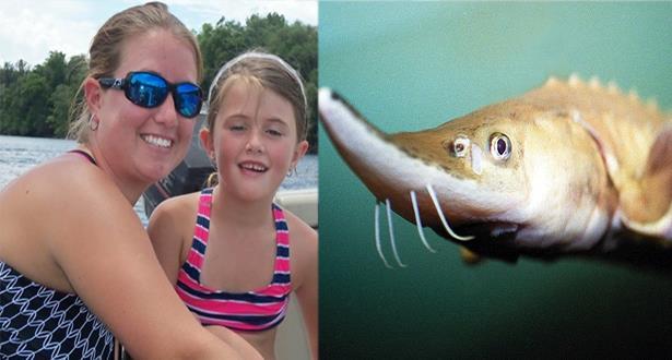 سمكة حفش تقتل طفلة عمرها خمسة أعوام في فلوريدا