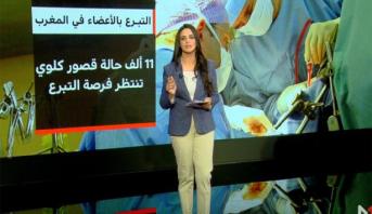 شاشة تفاعلية تسلط الضوء على مجال التبرع بالأعضاء في المغرب