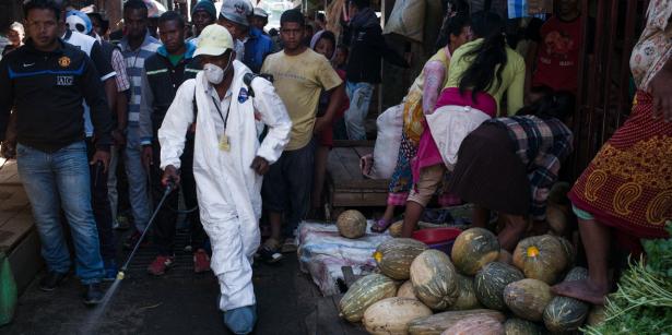 Madagascar: une épidémie de peste fait 94 morts