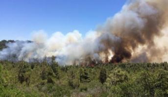 السيطرة بالكامل على حريق غابوي بمنطقة أوكايمدن بإقليم الحوز