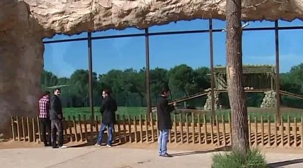 swinger amager rabat Givskud Zoo