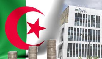 مؤسسة تأمين دولية : مخاطر الاحتقان الاجتماعي مرتفعة في الجزائر