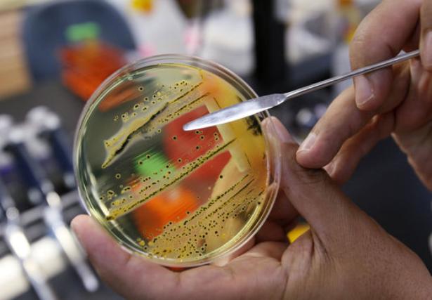 Les bactéries multi-résistantes aux antibiotiques inquiètent l'OMS