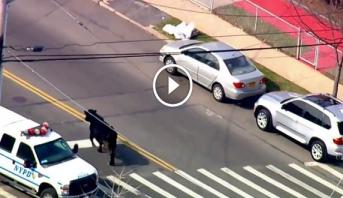 فيديو طريف .. مطاردة مثيرة لثور هارب في شوارع نيويورك