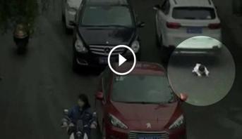 فيديو.. طفلة تنجو من الموت بأعجوبة تحت عجلات سيارات بالصين