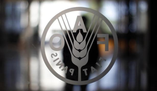 """منظمة """"الفاو"""" عازمة على مواصلة تطوير علاقاتها مع المغرب"""