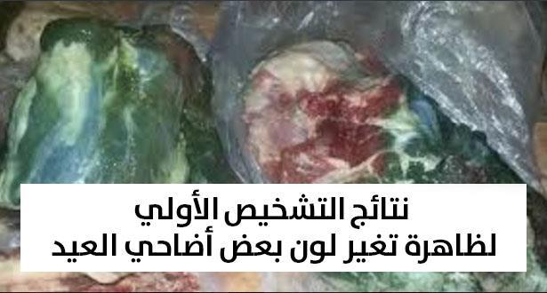 Aid Al Adha: La putréfaction des viandes des moutons liée aux conditions climatiques et de conservation (Akhannouch)