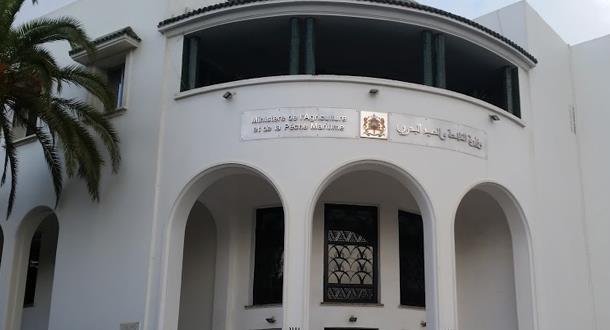 وزارة الفلاحة والصيد البحري والتنمية القروية تنفي إعفاء مسؤولين اثنين بالوزارة من مهامهما