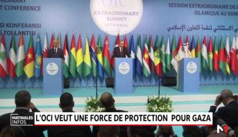 """L'OCI demandent une """"force de protection internationale"""" pour les Palestiniens"""