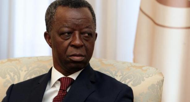 رئيس البرلمان الإفريقي: إفريقيا تعول على المغرب لنقل انشغالاتها بشأن محاربة التغيرات المناخية