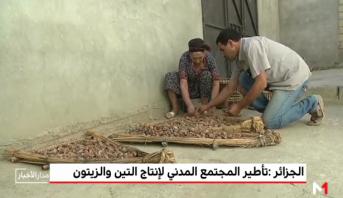 الجزائر .. تأطير المجتمع المدني لإنتاج التين والزيتون
