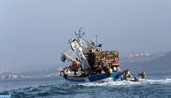 وزارة الفلاحة والصيد البحري : نشاط الصيد مستمر وتعزيز منتظر للعرض خلال الفترة المقبلة