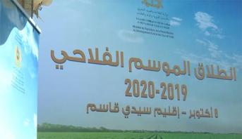 انطلاق الموسم الفلاحي 2019-2020 من جهة الرباط- سلا- القنيطرة