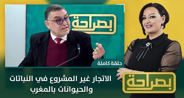 الاتجار غير المشروع في النباتات والحيوانات بالمغرب