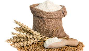 المخزون الوطني من الحبوب وفير وأرباب المطاحن يؤكدون رفع قدراتهم الإنتاجية لمادة الدقيق