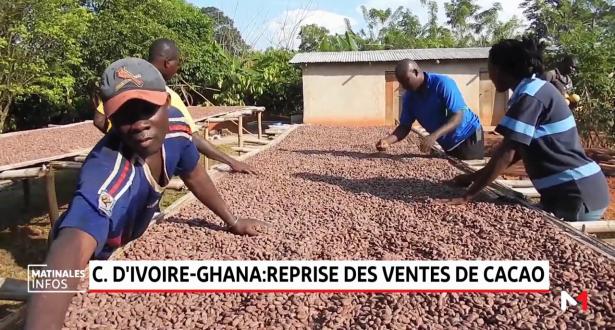 Côte d'Ivoire-Ghana: reprise des ventes de cacao