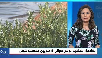 دعامات مخطط المغرب الأخضر تحقق نتائج مهمة للفلاحة المغربية