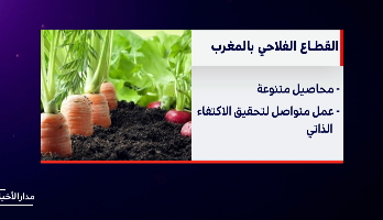 القطاع الفلاحي .. خصائص مهمة وإسهامات كبيرة في الاقتصاد المغربي