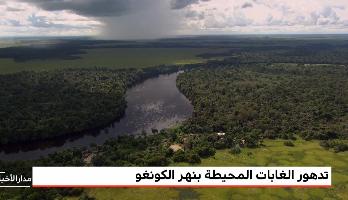 تدهور الغابات المحيطة بنهر الكونغو خلال العقود الأخيرة