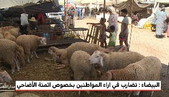 روبورطاج من الدار البيضاء .. تضارب في آراء المواطنين حول أثمنة الأضاحي