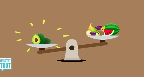 L'aliment du jour : L'avocat
