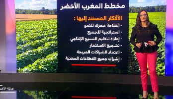 ملف .. أهمية قطاع الفلاحة في الاقتصاد المغربي
