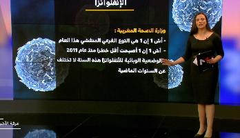 ملف .. وضعية الأنفلونزا بالمغرب