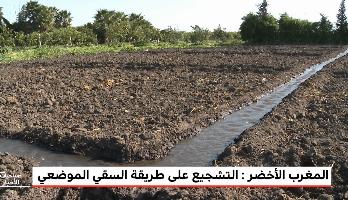 """""""المغرب الأخضر"""" .. سياسة الاقتصاد المائي أعطت أكلها والتطوير مستمر"""