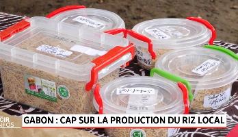 Gabon: cap sur la production du riz local