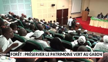 Forêt: préserver le patrimoine vert au Gabon