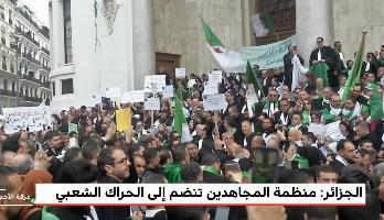 الجزائر.. المحامون والموثقون يطالبون السلطات باحترام الدستور