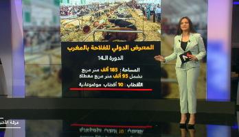 شاشة تفاعلية .. منجزات المغرب في المجال الفلاحي