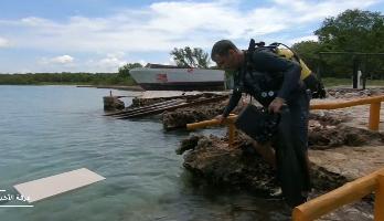 فنان يتخذ من الشعاب المرجانية مرسما لإنجاز أعماله