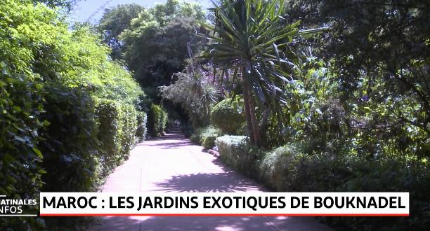 Maroc: les jardins exotiques de Bouknadel