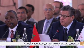 المغرب .. استعراض تحديات القطاع الفلاحي في القارة الإفريقية