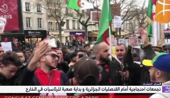تجمعات احتجاجية أمام القنصليات الجزائرية وبداية صعبة للرئاسيات في الخارج