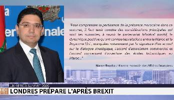 UK- Africa Summit 2020 : Londres prépare l'après brexit