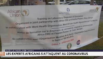 Coronavirus : les experts africains réunis à l'Institut Pasteur de Dakar