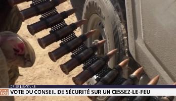 Crise libyenne : vote du conseil de sécurité sur un cessez-le-feu