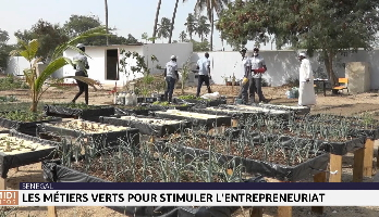 Sénégal: les métiers verts pour stimuler l'entrepreneuriat