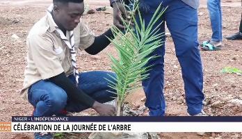 Niger: célébration de la journée de l'arbre
