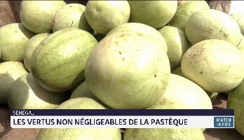 Sénégal: les vertus non négligeables de la pasthèque