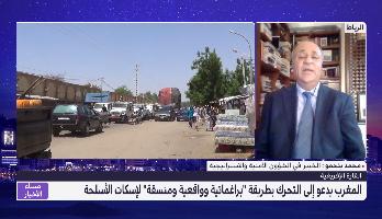 """بنحمو يحلل .. دعوة المغرب إلى التحرك بطريقة """"براغماتية وواقعية ومنسقة"""" لـ""""إسكات الأسلحة"""""""