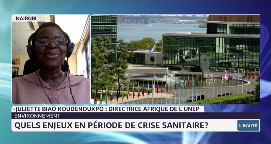 Enjeux environnementaux en période de crise sanitaire: décryptage de Juliette Biao Koudenoukpo, directrice Afrique du PNUE