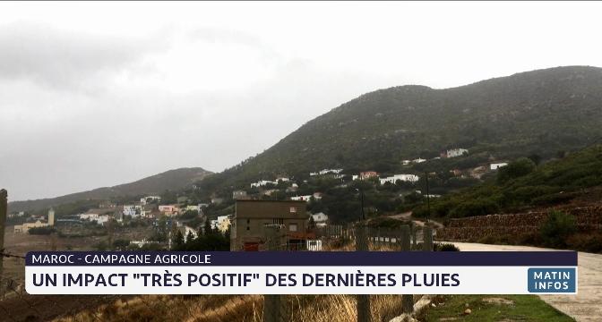 """Maroc-campagne agricole: un impact """"très positif"""" des dernières pluies"""