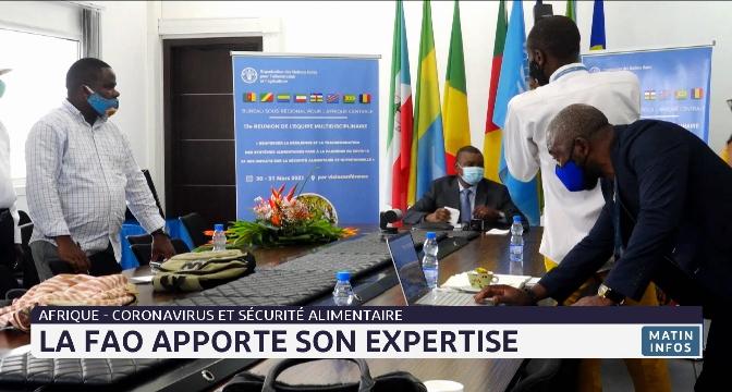 Afrique-Coronavirus et sécurité alimentaire: la FAO apporte son expertise