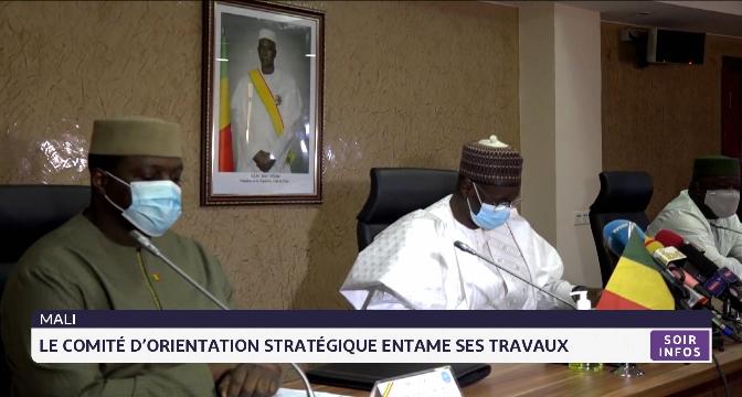Mali: le comité d'orientation stratégique entame ses travaux